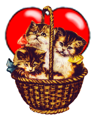 kittens in a basket with a heart