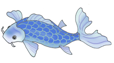 koi fish drawings blue koifish