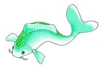 koi fish drawings green koifish