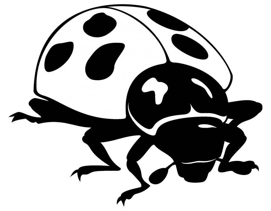 black white drawing ladybug