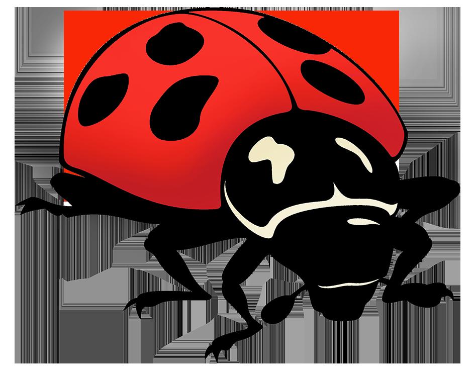 ladybug drawing png