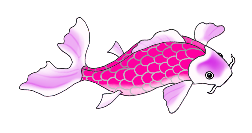 lila pink koi fish drawing