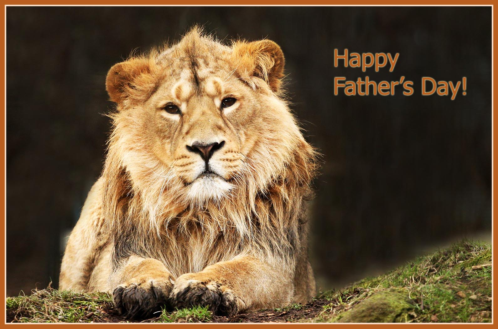 happy father's day card with lion