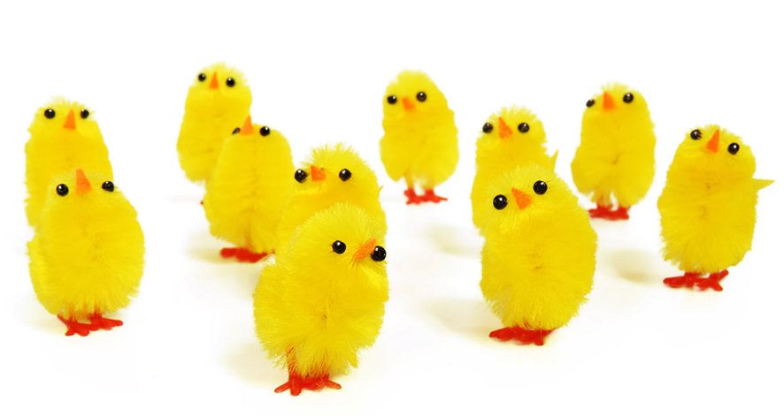 lots of small Easter chicken decorations