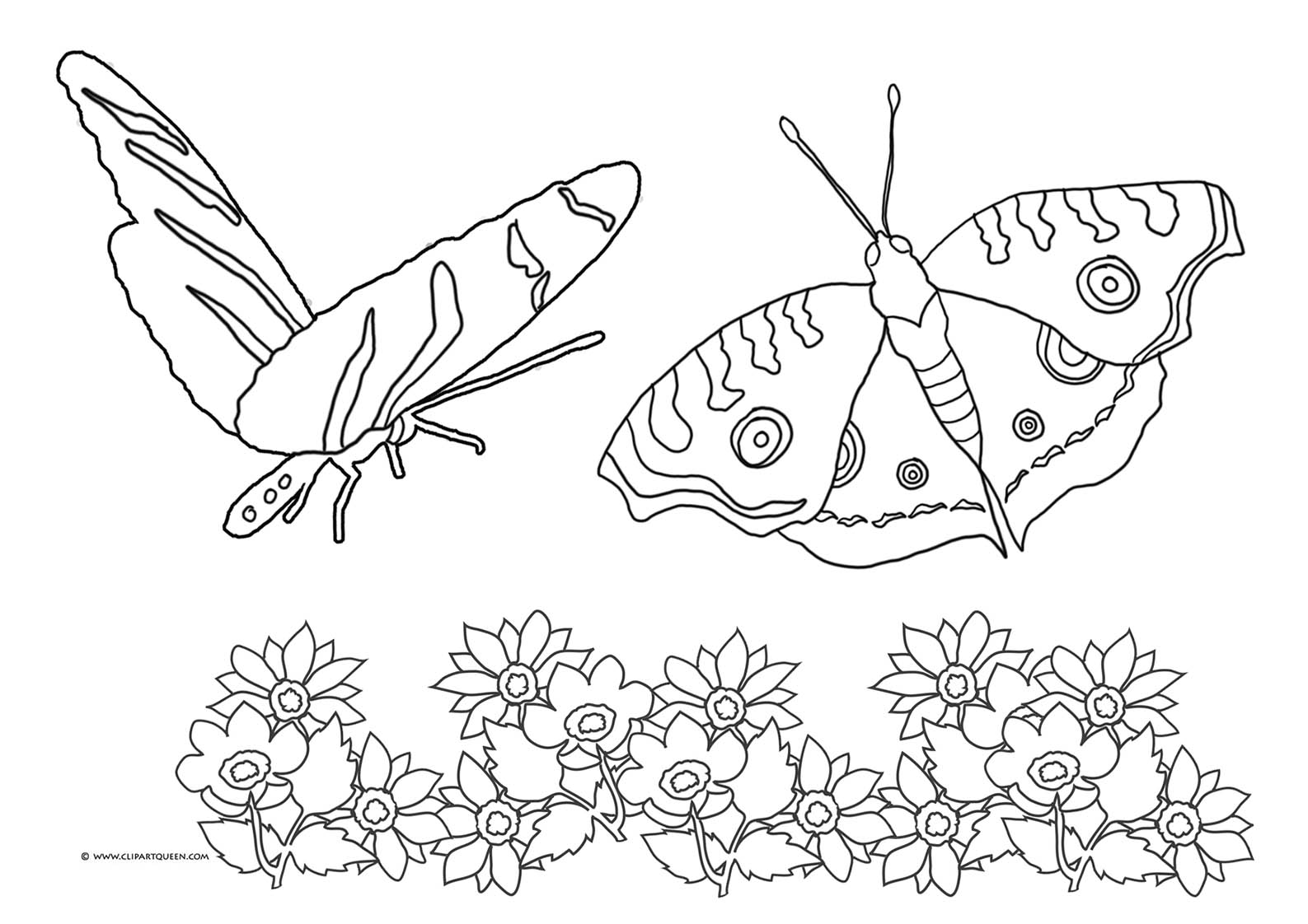 Coloring Pages Flowers And Butterflies - Eskayalitim