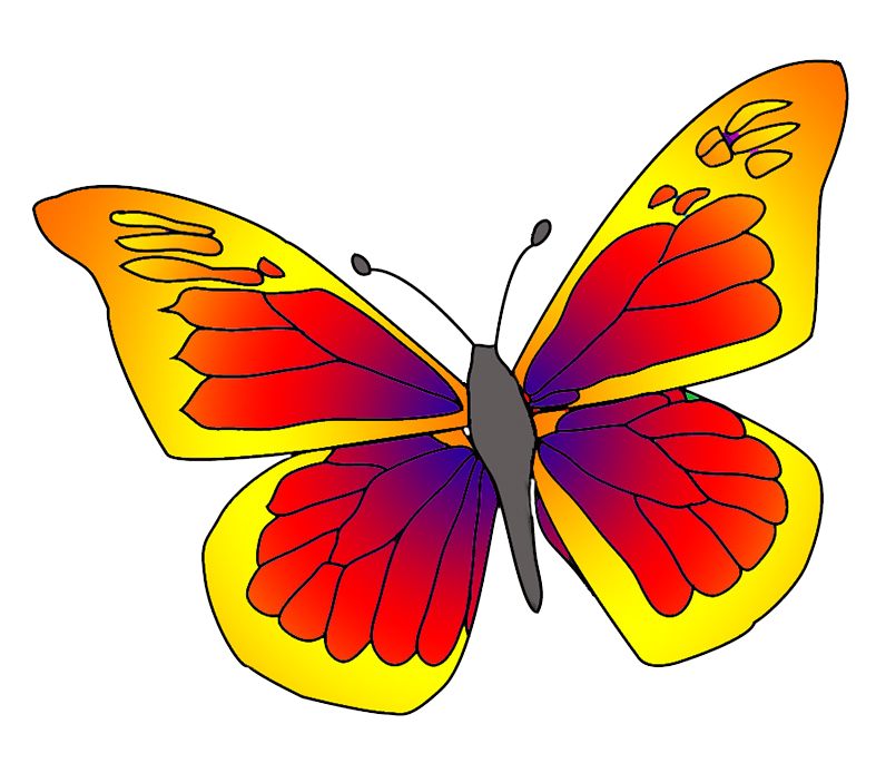 red orange butterfly clipart