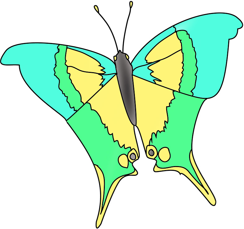 yellow-green-blue-butterfly-clipart