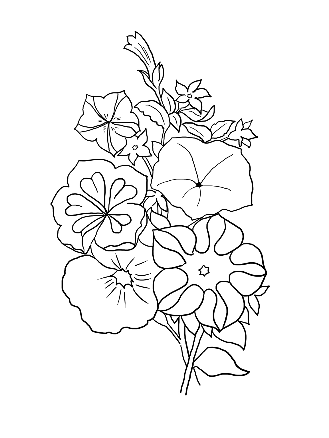 pics of coloring pages flowers - photo#17