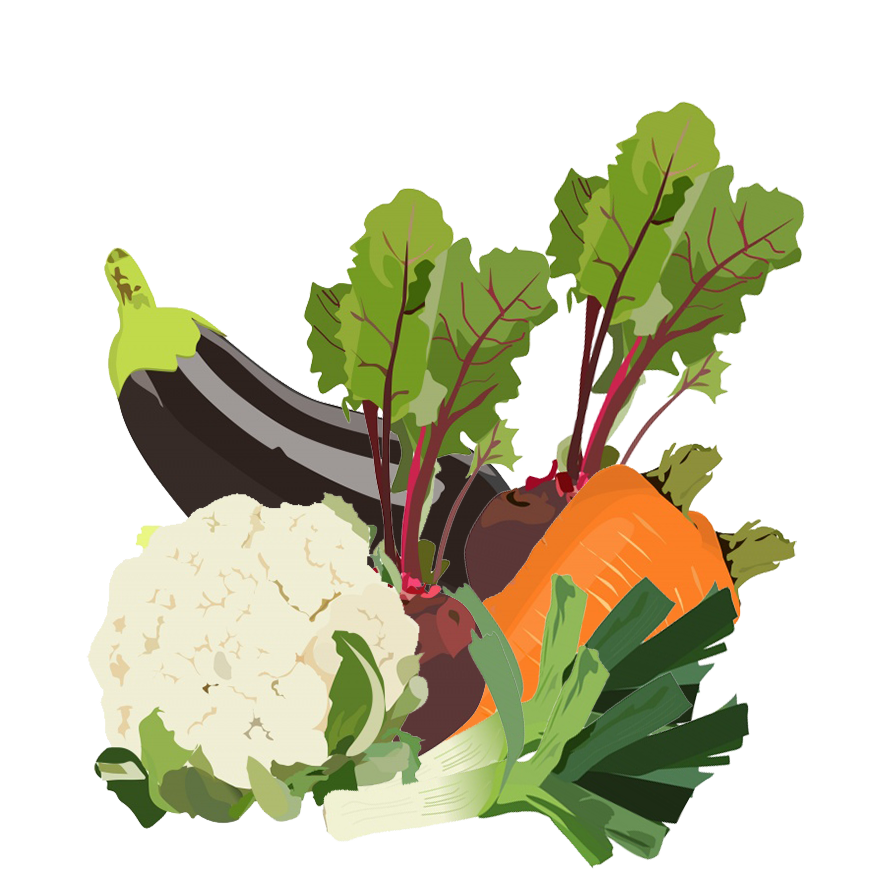 mixed vegetables clipart