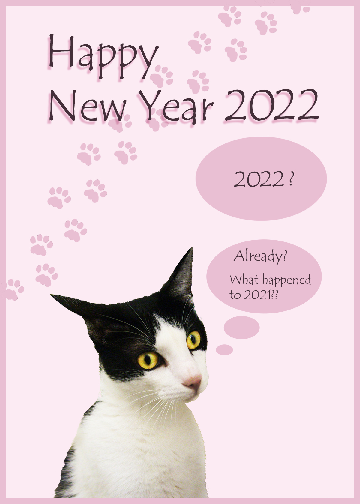 happy New Year card with funny cat