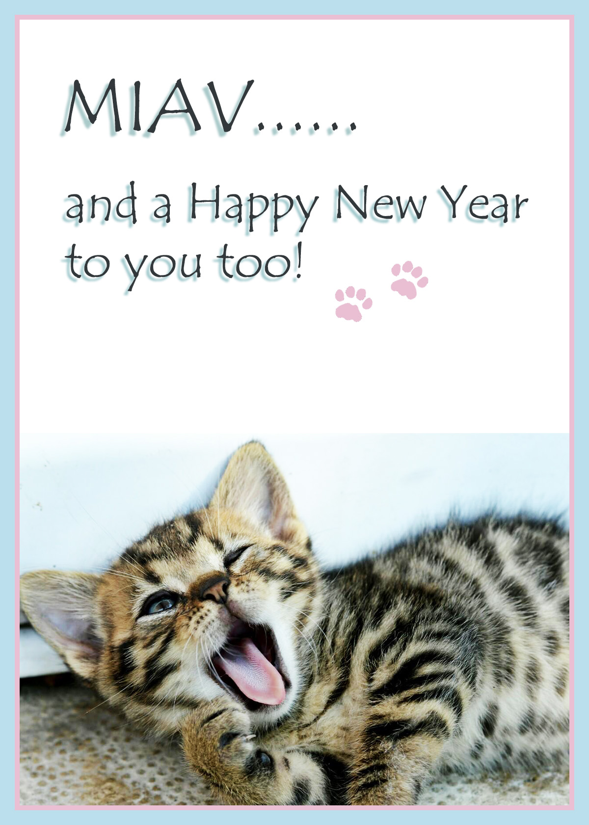 Sleepy kitten wishing you a happy New Year