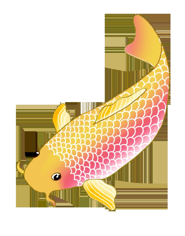 koi fish sketch orange