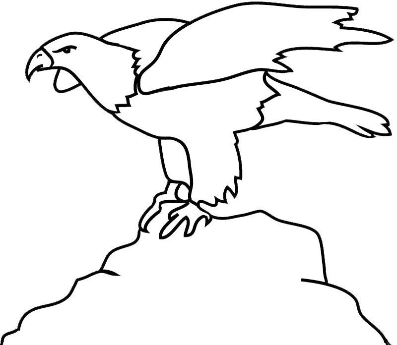 bald eagle outline on rock