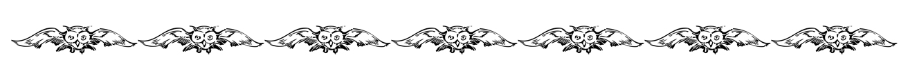flying owl border