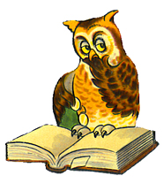 Owl reading a book PNG