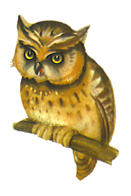 Owl clip art die cut scrap owl