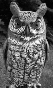 owl statuette clip art