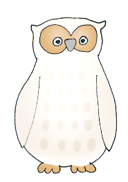 owl drawings almost white owl