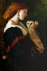oil pain woman owl