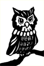 pictures of owls white background drawing
