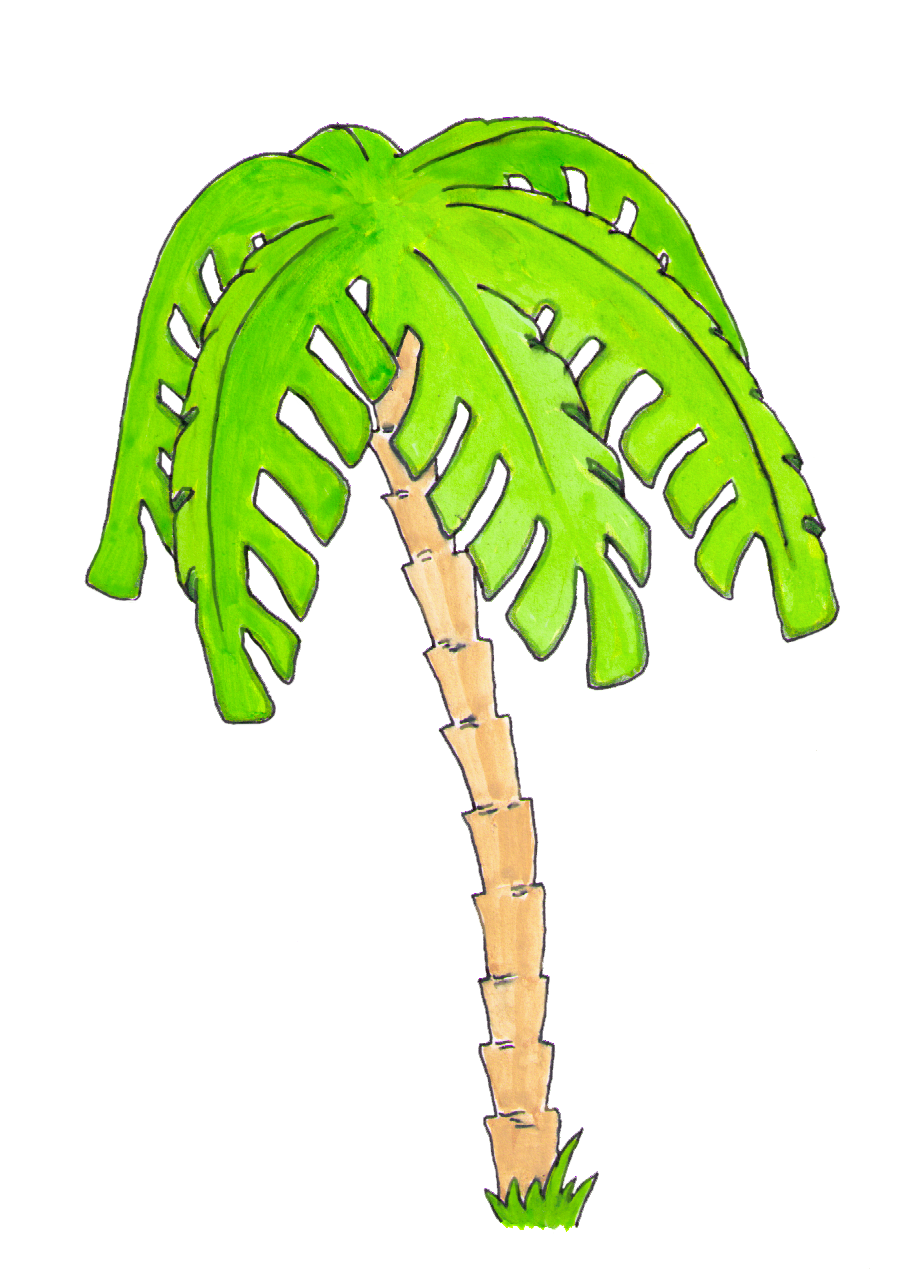 watercolor palm tree clipart