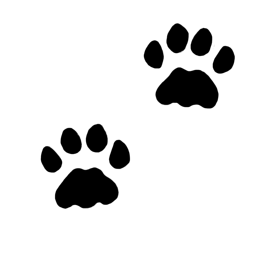 paw prints clipart rh clipartqueen com  animal tracks clipart free