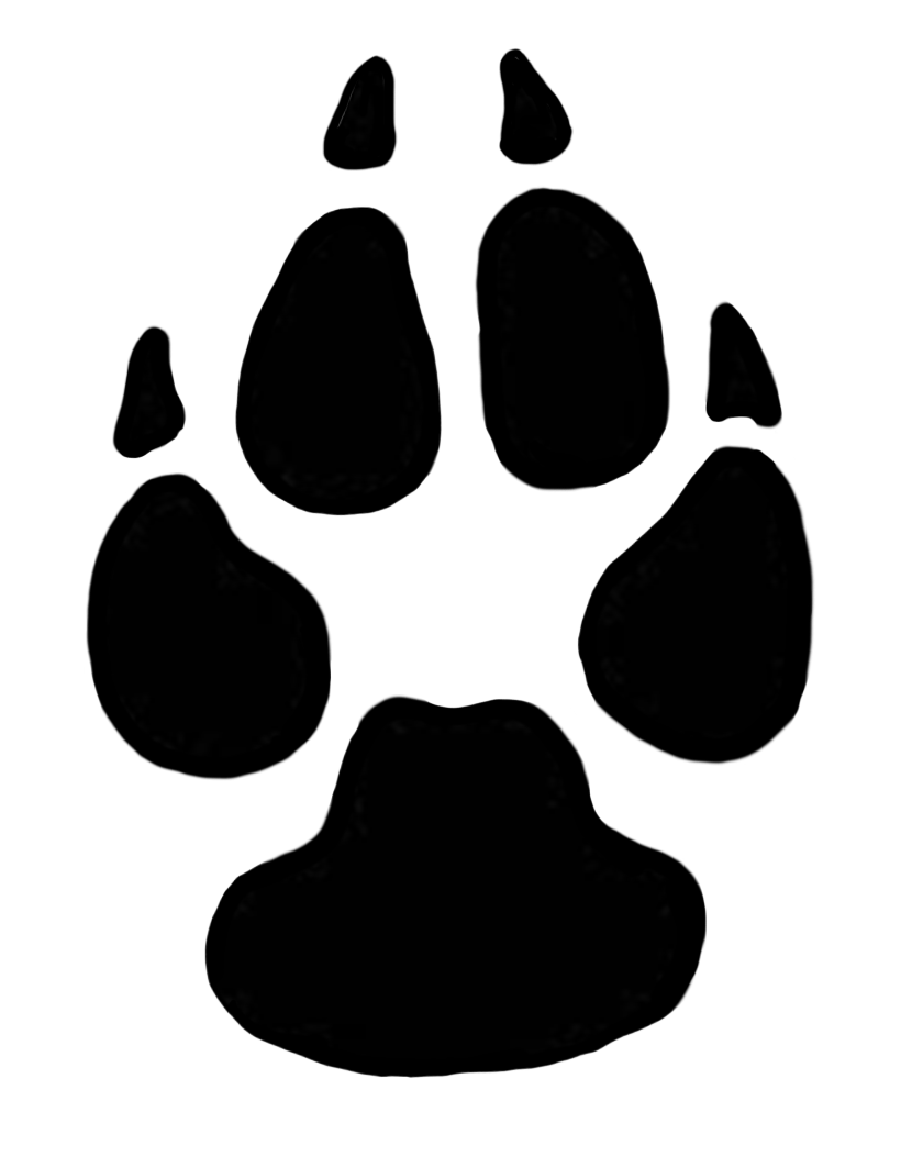 dog paw prints in - photo #13