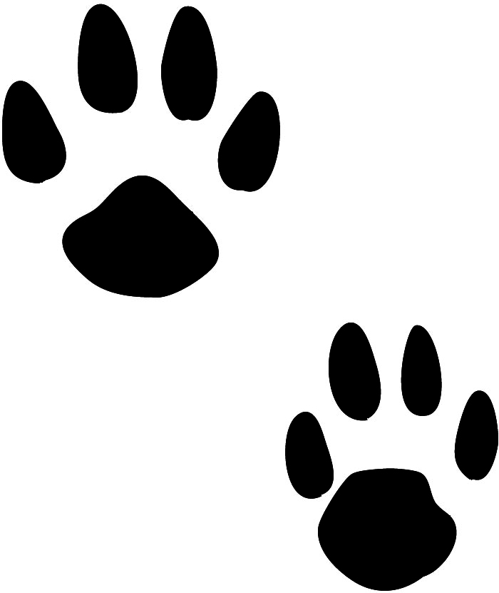 Paw Prints Clipart Try to search more transparent images related to dog print png |. paw prints clipart