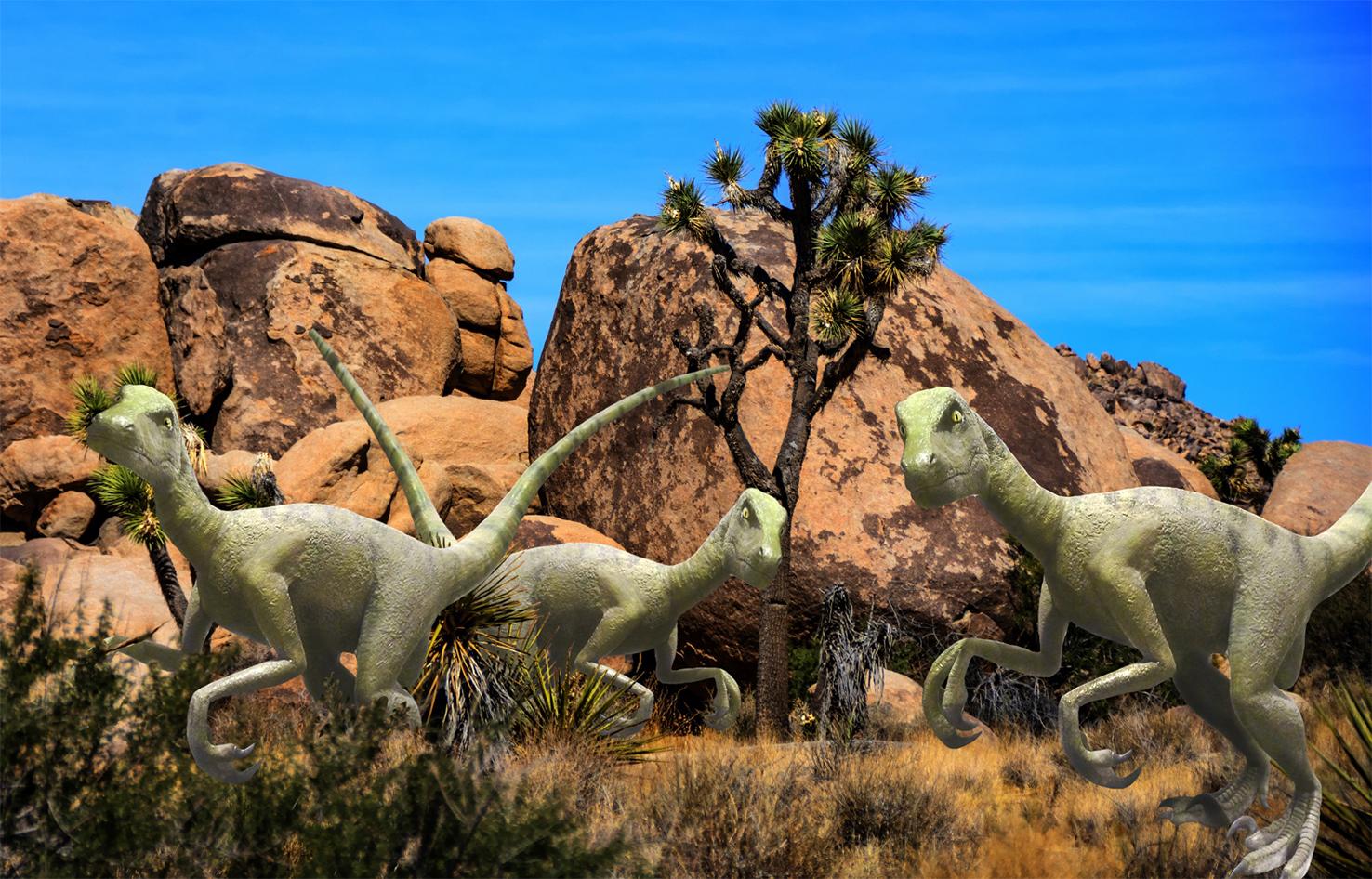 Picture of three velociraptors