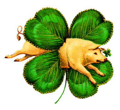 A pig for luck and a St. Patrick's clover