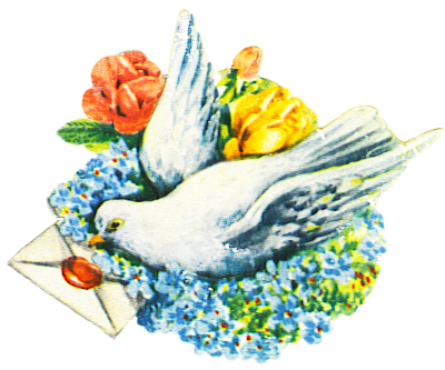 pigeon with letter and flowers