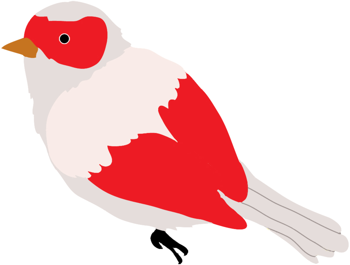 colored bird clip art