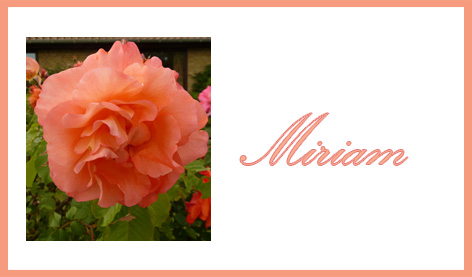 place card with pink rose and name