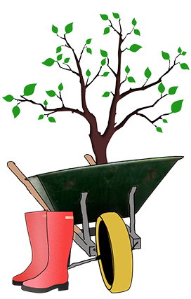 planting a tree clipart