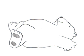 sleeping polar bear sketch