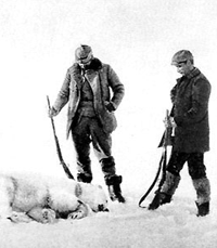 polar-bear-facts-killed-polar-bear