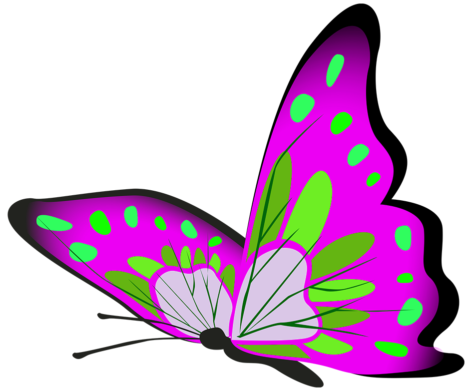 purple and green butterflly flying