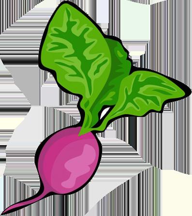 radish clipart