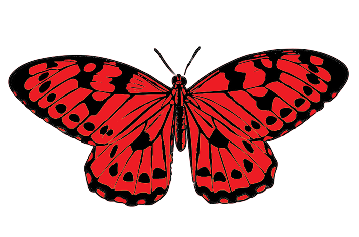 red and black butterfly clipart