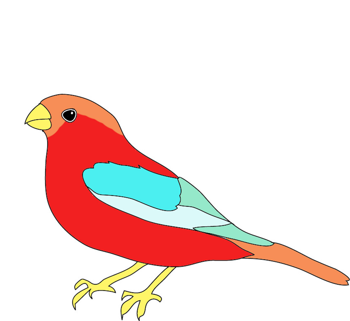 bird colored in many colors