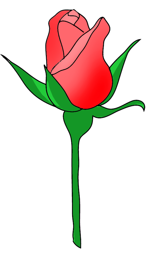 rose bud red clip art