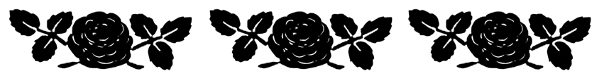 border with black white roses