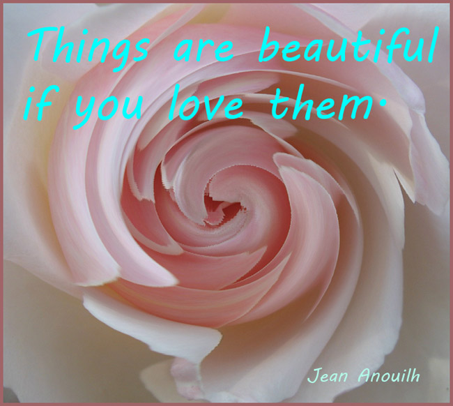 picture quote pink rose love saying