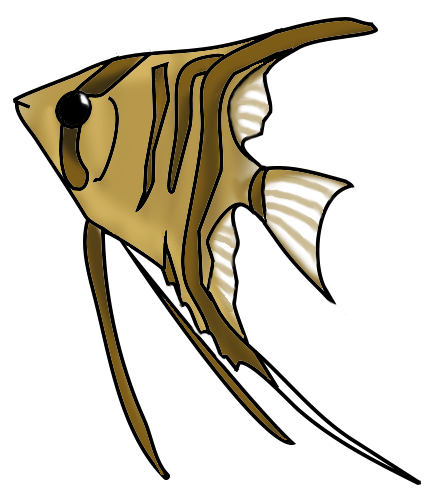 Scalare fish
