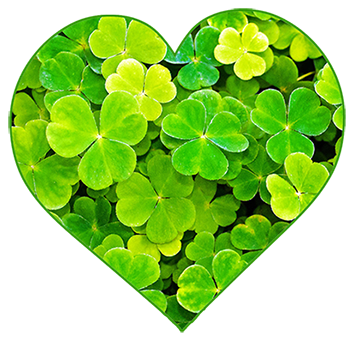 heart of shamrock