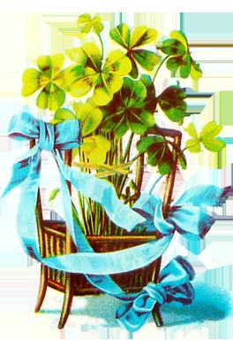 shamrocks in a basket for St. Patrick's day