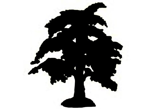 silhouette of big tree black