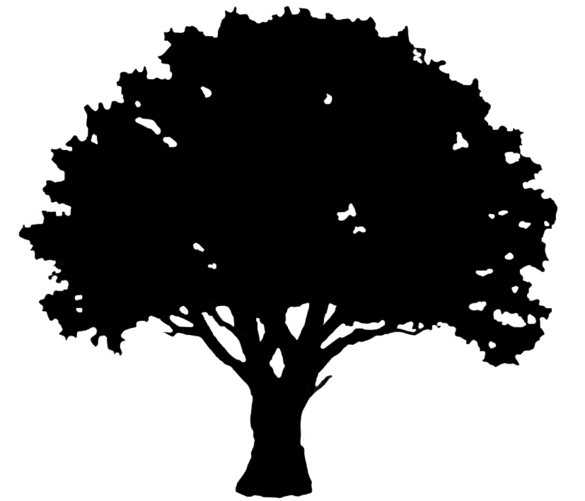 oak tree silhouette graphics