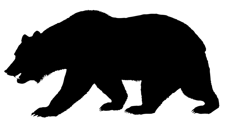 silhouette of bear