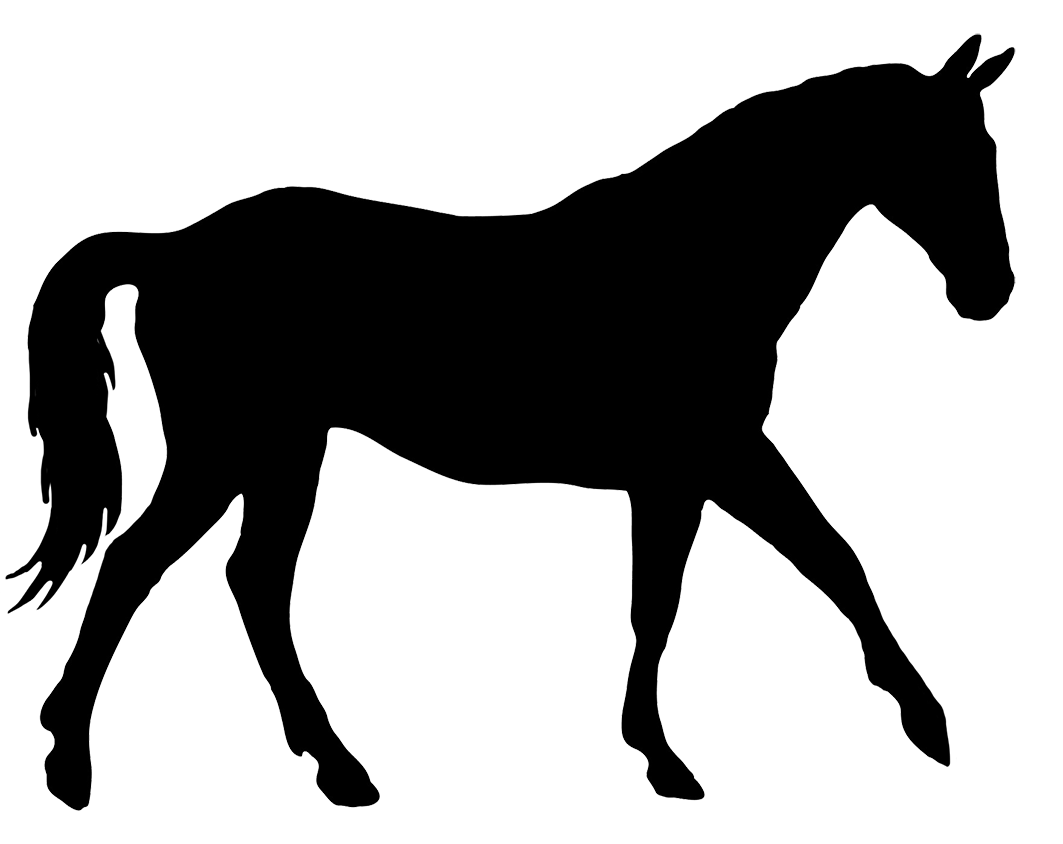 Clipart Rearing Horse